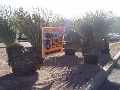 Little Caeser's Pizza Sign in parking landscape area
